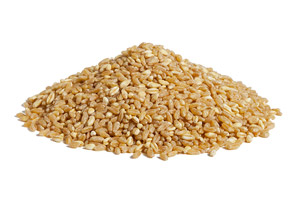 Quick-Cook-Durum-Wheat.jpg